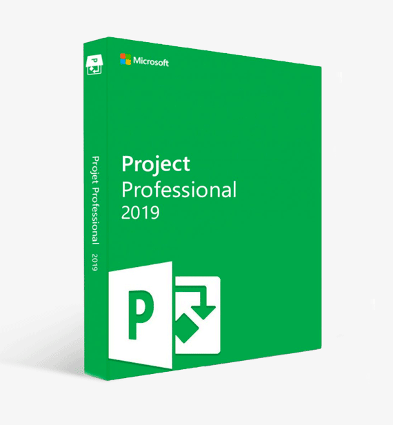 buy project 2019 professional